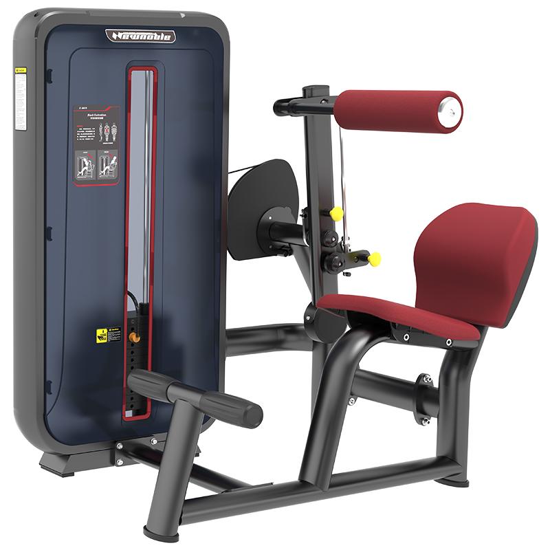 康强商用健身房专用器械力量器械专项器械无氧健身器械 6010背部伸展训练器