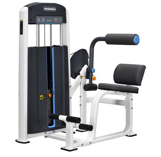 商用健身房专用器械力量器械专项器械无氧健身器械 1010背部伸展训练器