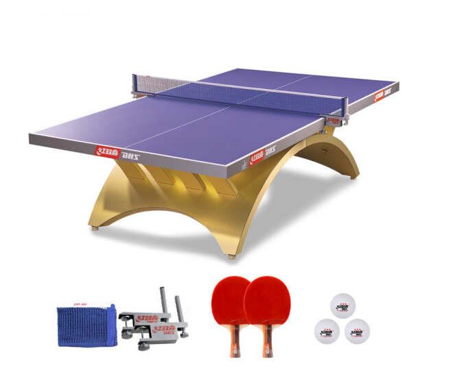 红双喜(DHS)金彩虹比赛赛事乒乓球桌专业球台TCH-G LED灯(高档网架、乒拍、乒球)