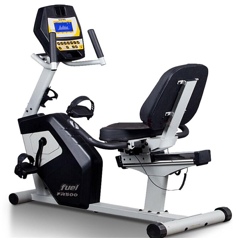 DYACO岱宇FR300家用磁控静音动感单车室内运动迷你卧式健身自行车