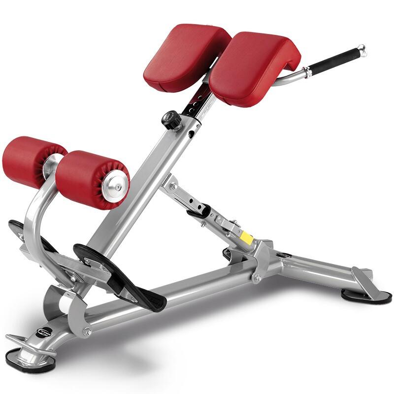 欧洲BH必艾奇多功能训练凳健身房商用健身器材 L805背肌训练椅