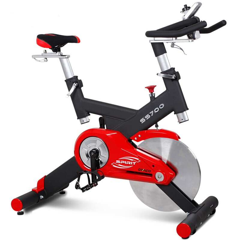 岱宇(DYACO)动感单车SS700进口静音家用款动感单车骑行车自行车室内健身器 送货安装 SS700