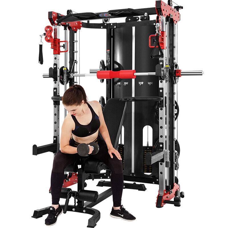 康强史密斯机BK509多功能综合训练器 健身器材 龙门架 力量健身器材 送货包安装原装正品 509【专业版】